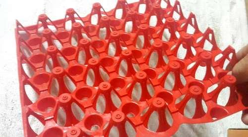 Maple Plástico 30cm X 30 Cm (bandeja Para Huevos)