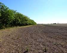 Vendo 290 Has Mixtas 110 Agric. Y 180 Ganaderas - Vera -sfe
