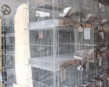 Jaulas Usadas Para Chinchillas, Cobayos, Conejos, Etc.