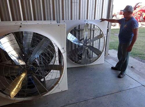 Ventiladores bienestar animal 6 aspas agroads for Aspas para ventiladores