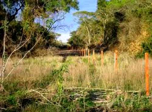 3200 Has Zona Laguna Yema - u$s 350 / ha - Agroads (cod