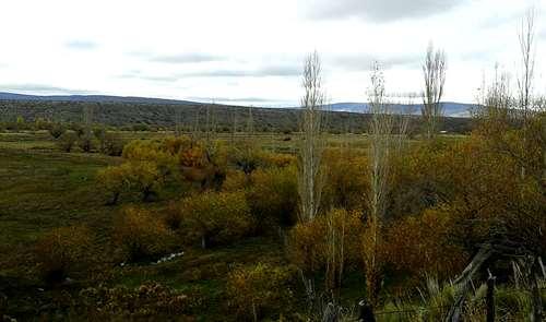 Campo vendo provincia de neuquen ha agroads for Jardin 50 neuquen