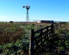 158 Ha Agricolas A 50 Km De Tandil