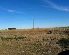 270 Has Agricolas, En Charlone, Gral Villegas.