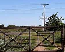 Oportunidad 600 Has.winifreda La Pampa Solo U$s 1.350/ha.