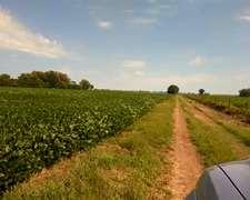 Miguel Riglos, La Pampa Muy Buen Campo Para Agricultura.