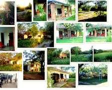 Hermosa Casa De Campo Sobre Gran Terreno Con Muchos Arboles
