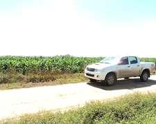 Vendo Chacras De (50-100-200-300-600) Hect En Chaco