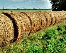 Rollos De Alfalfa Y Pastura