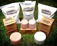 Bloques Y Suplementos Minerales Para Ganado - Salgar