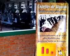 Expeller De Algodon - Venta