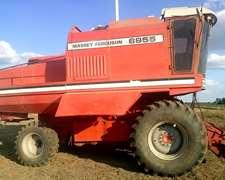 Vendo Cosechadora Massey Ferguson 6855