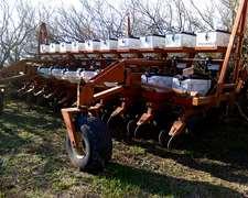 Vendo Gringa 4 De 10 A 70 Con Fertilizacion
