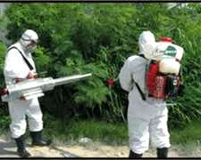 Fumigaciones - Ing. Agronomo - Control De Plagas
