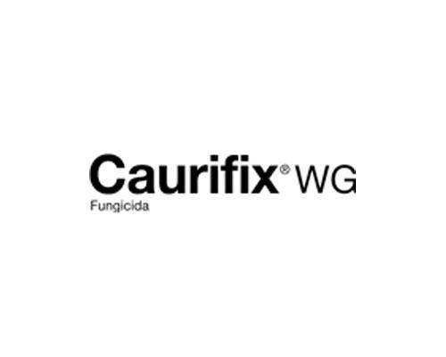 CAURIFIX WG