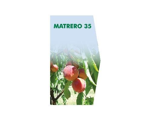 MATRERO 35