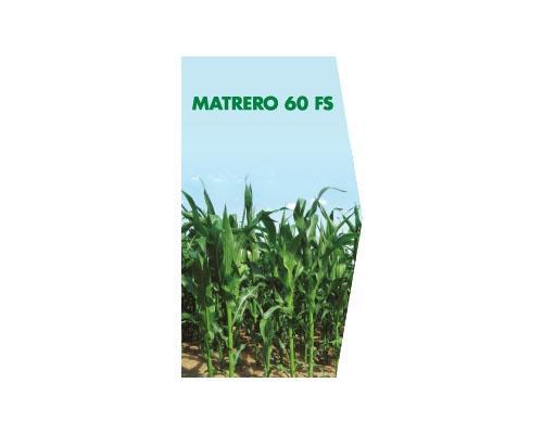 MATRERO 60