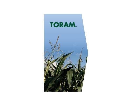 TORAM