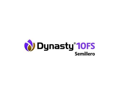DYNASTY 10 FS SEMILLERO