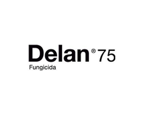 DELAN 75