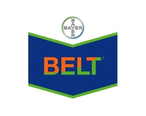 BELT 48 SC