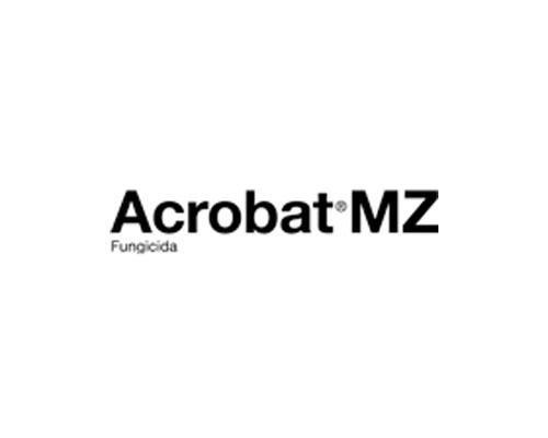 ACROBAT MZ