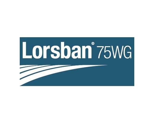 LORSBAN 75 WG
