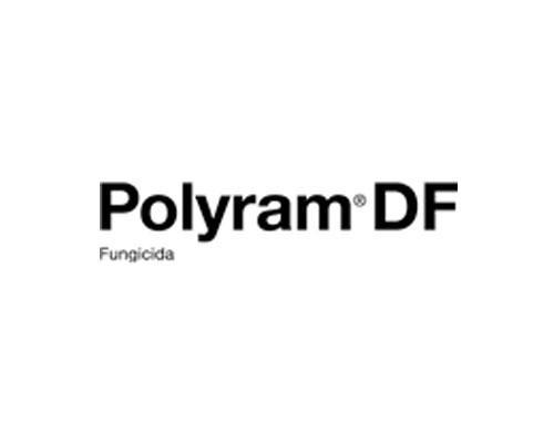 POLYRAM DF