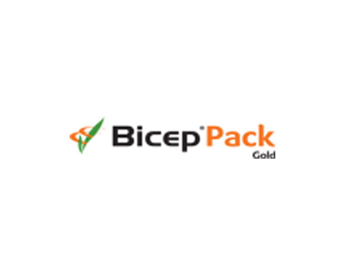 BICEP PACK GOLD