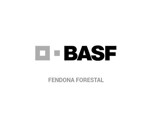 FENDONA FORESTAL