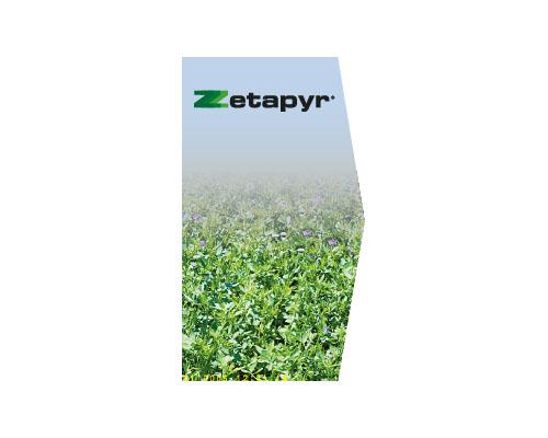 Zetapyr