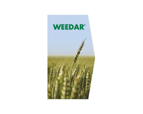 WEEDAR (AMINA)
