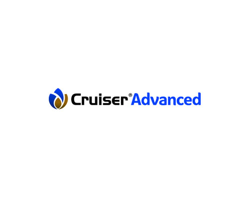 CRUISER ADVANCED