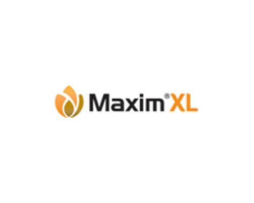 MAXIM XL