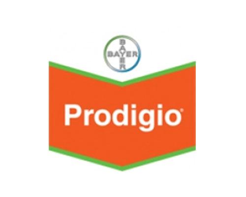 PRODIGIO 60 SC