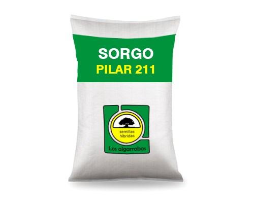PILAR 211