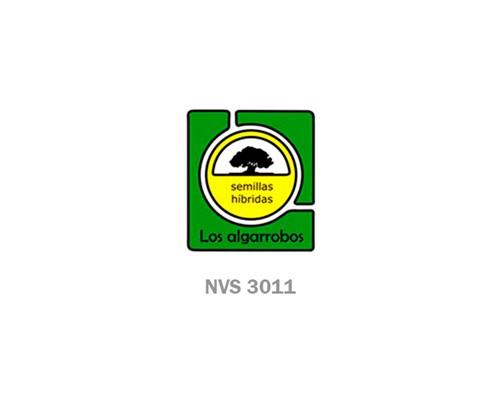 NVS 3011