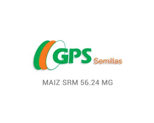 MAIZ SRM 56.24 MG