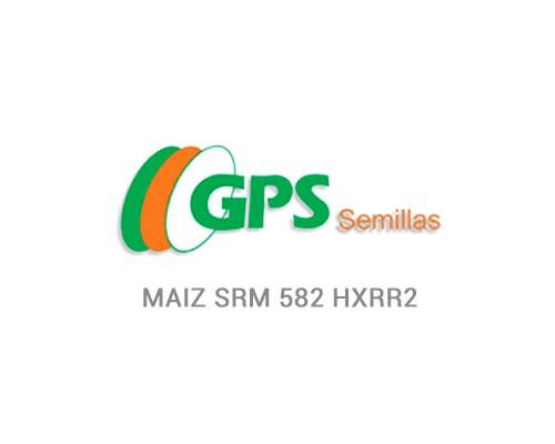 MAIZ SRM 582 HXRR2