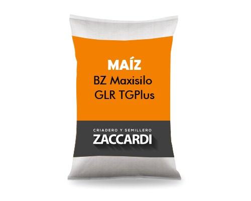 BZ Maxisilo GLR TGPlus