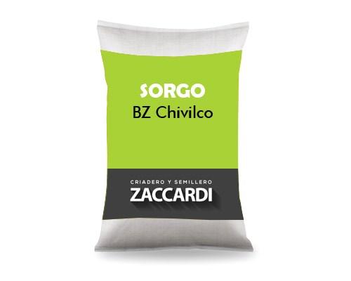 BZ Chivilco