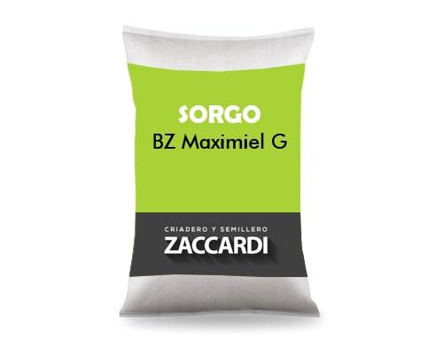 BZ Maximiel G