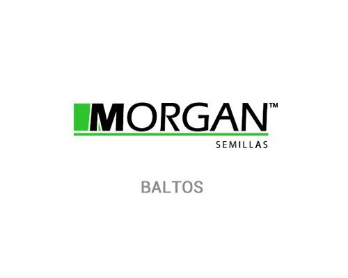 BALTOS