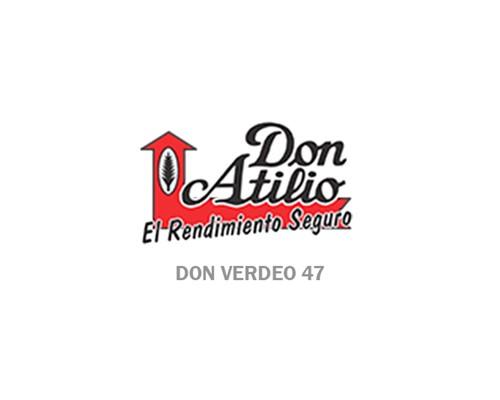 DON VERDEO 47
