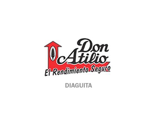 DIAGUITA