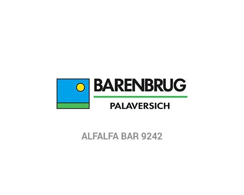Alfalfa BAR 9242