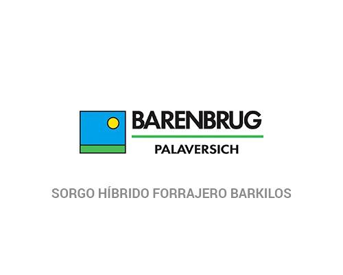 Sorgo Híbrido Forrajero Barkilos